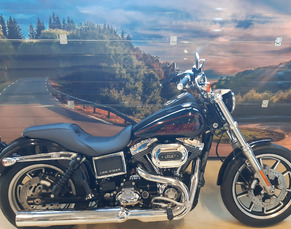 HARLEY-DAVIDSON FXDL ABS DYNA LOW RIDER